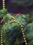 Rama real del abeto con las decoraciones Foto de archivo