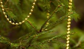 Rama real del abeto con las decoraciones Imagen de archivo libre de regalías