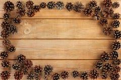 Rama rożki Fotografia Stock