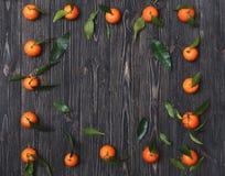 Rama robić świeżo ukradzeni pomarańczowi tangerines na zmroku textured drewnianego tło, odgórny widok Zdjęcia Stock