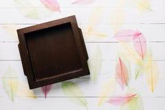 Rama robić od drewna z kolorem suszącym opuszcza na drewnianym bielu bac Obraz Royalty Free