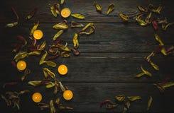 Rama robić wysuszeni kwiatów płatki, świeczki i Zdjęcie Stock