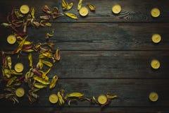 Rama robić wysuszeni kwiatów płatki, świeczki i Zdjęcia Royalty Free