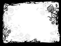 rama rose Obrazy Stock