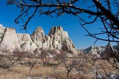 Rama seca en un fondo de repisas rocosas hermosas y del cielo azul de la mañana en el valle con los árboles secos Fotografía de archivo libre de regalías