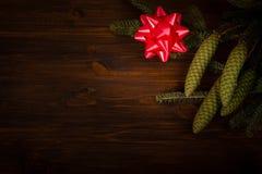 Rama Spruce con el cono y el arco atado Fotos de archivo libres de regalías