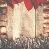 Rama układająca od poinseci kwitnie i kapuje z dryftowym drewnem Obraz Royalty Free