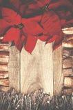 Rama układająca od poinseci kwitnie i kapuje z dryftowym drewnem Zdjęcia Stock