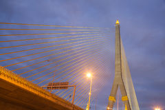 Rama VIII Bridge. During the night With lights at the park Royalty Free Stock Photos