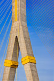 Rama VIII Bridge, Suspension bridge Royalty Free Stock Photo