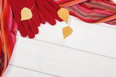 Rama woolen chusta dla kobiety i rękawiczki, odziewający dla jesieni lub zimy, kopii przestrzeń dla teksta na białych deskach Zdjęcia Stock