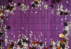 Rama wysuszeni kwiaty Obrazy Stock