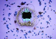 Rama wysuszeni kwiaty, menchia Fotografia Stock