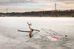 Rama y carro de la compra de árbol en agua congelada fotografía de archivo libre de regalías