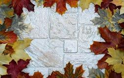 Rama z kolorowymi liśćmi Obraz Royalty Free