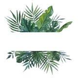 Rama z palmami opuszcza dla kartki z pozdrowieniami, ślubny zaproszenie beak dekoracyjnego lataj?cego ilustracyjnego wizerunek sw fotografia royalty free