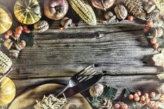 Rama z sezonowymi składnikami w dziękczynienie dniu Jedzenie rama Zdjęcia Stock