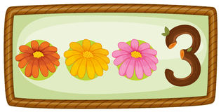 Rama z trzy kwiatami Fotografia Stock