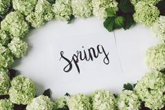 Rama zielony kolor z kaligraficzną wpisową wiosną Obraz Stock