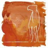 Ramadan greeting with camel Stock Photos