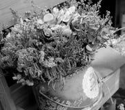Ramalhete abstrato de flores secadas Fotografia de Stock
