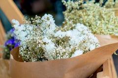 Ramalhete abstrato de flores secadas, foco do borrão Fotos de Stock