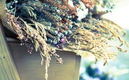 Ramalhete abstrato de flores secadas, foco do borrão Fotografia de Stock