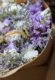 Ramalhete abstrato de flores secadas, foco do borrão Imagens de Stock