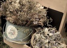 Ramalhete abstrato de flores secadas, foco do borrão Fotos de Stock Royalty Free