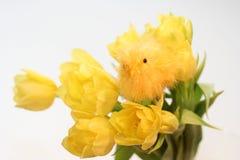 Ramalhete amarelo com galinha   Foto de Stock