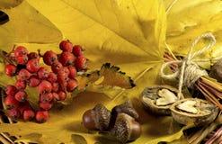 Ramalhete amarelo das folhas de outono Foto de Stock Royalty Free