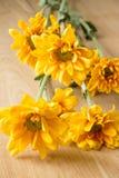 Ramalhete amarelo dos crisântemos Fotografia de Stock Royalty Free
