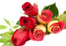 Ramalhete amarelo e vermelho das rosas imagem de stock