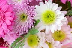 Ramalhete ascendente próximo da flor em um envoltório cor-de-rosa imagens de stock royalty free