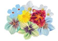 Ramalhete bonito das flores Flores do verão do vetor isoladas no fundo branco Flor para o projeto da flor Camomila Fotos de Stock