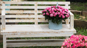 Ramalhete bonito das rosas no banco de madeira outdoors fotografia de stock royalty free