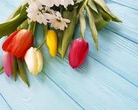 Ramalhete bonito das tulipas em de madeira azul com lugar para o texto, o 8 de março Fotos de Stock Royalty Free
