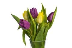 Ramalhete bonito das tulipas no vaso no fundo branco Fotografia de Stock