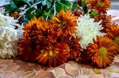 Ramalhete bonito de flores alaranjadas e brancas imagem de stock royalty free
