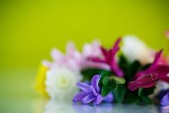 Ramalhete bonito de flores da mola Fotografia de Stock Royalty Free