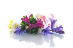 Ramalhete bonito de flores da mola Imagem de Stock Royalty Free