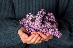 Ramalhete bonito de flores lil?s roxas nas m?os das meninas fotos de stock royalty free