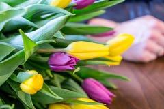 Ramalhete bonito de tulipas amarelas e roxas, close-up Fotografia de Stock