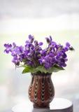 Ramalhete bonito de violetas do campo Imagem de Stock