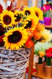 Ramalhete bonito do girassol imagem de stock royalty free