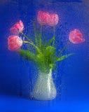 Ramalhete bonito do tulip Imagem de Stock Royalty Free