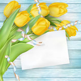 Ramalhete bonito dos tulips Eps 10 Foto de Stock Royalty Free