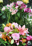 Ramalhete bonito grande das flores Fotografia de Stock