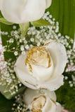 Ramalhete branco das rosas Fotografia de Stock
