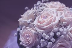Ramalhete branco do casamento Foto de Stock